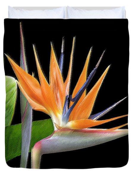Royal Beauty I - Bird Of Paradise Duvet Cover