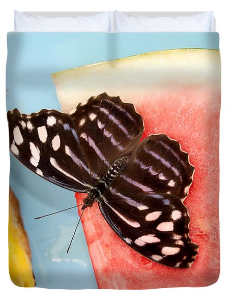 Duvet Cover featuring the photograph Royal Blue Butterfly by Eva Kaufman