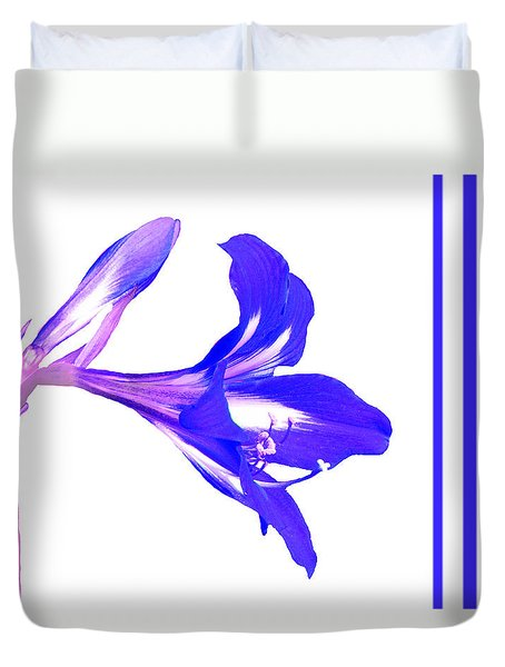 Duvet Cover featuring the photograph Royal Blue Lily On White by Rosalie Scanlon