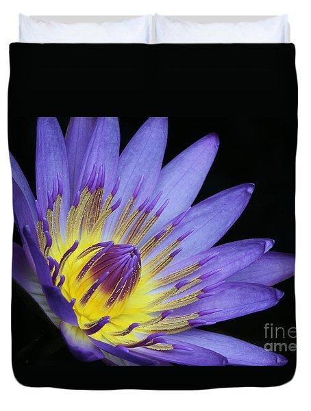 Royal Purple Water Lily #14 Duvet Cover by Judy Whitton