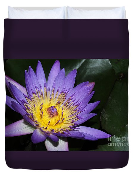 Royal Purple Water Lily #6 Duvet Cover