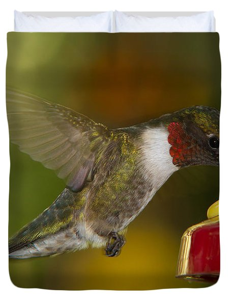 Duvet Cover featuring the photograph Ruby-throat Hummer Sipping by Robert L Jackson
