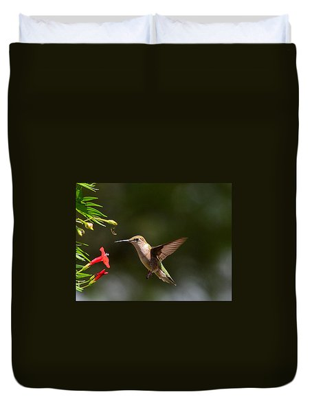 Ruby Throat Hummingbird Duvet Cover by Kathy Eickenberg
