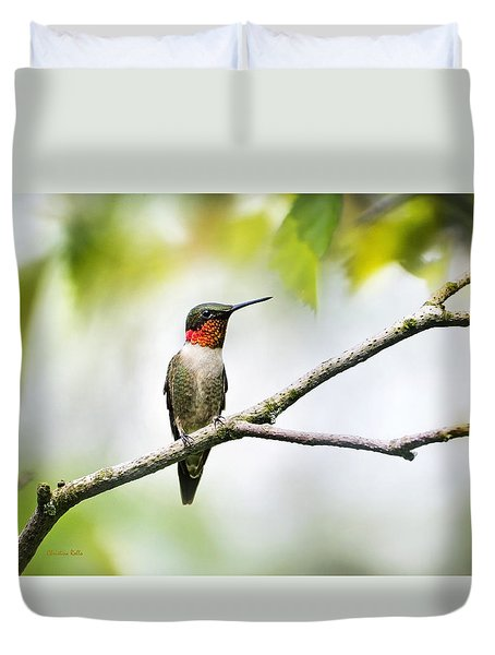 Ruby Throated Hummingbird Duvet Cover by Christina Rollo