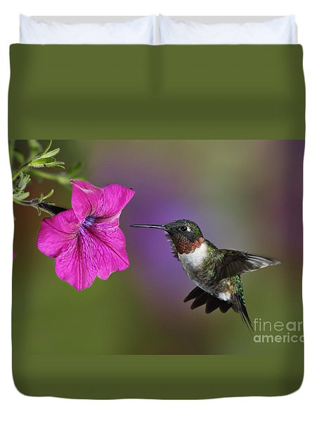 Ruby-throated Hummingbird - D004190 Duvet Cover by Daniel Dempster
