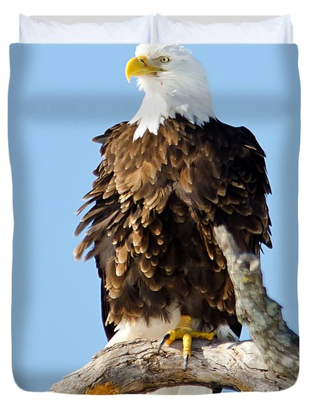 Ruffled Eagle Duvet Cover