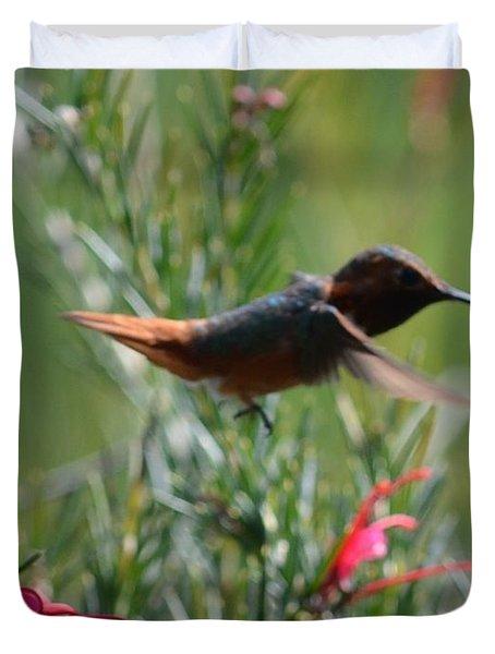 Rufous Humming Bird Duvet Cover