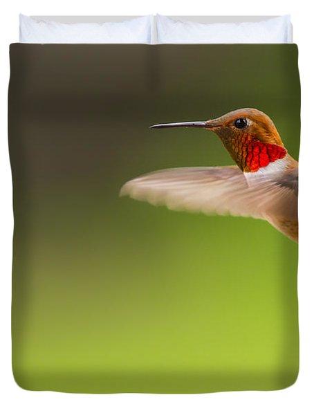 Rufous Hummingbird Male Duvet Cover