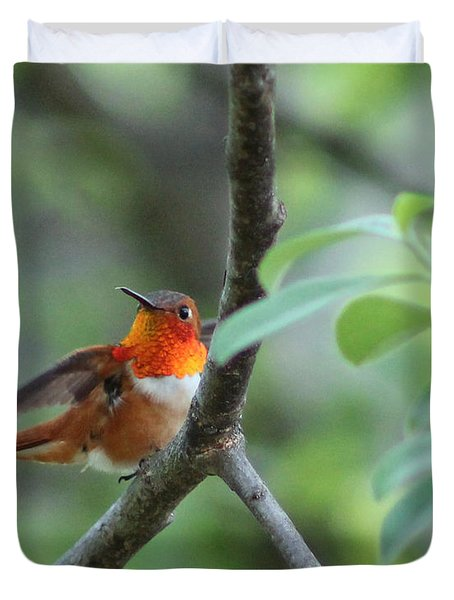 Rufus Hummingbird Duvet Cover by Leone Lund