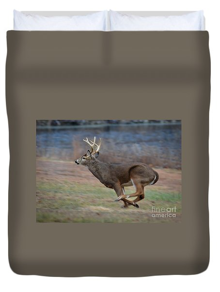 Running Buck Duvet Cover by Amy Porter