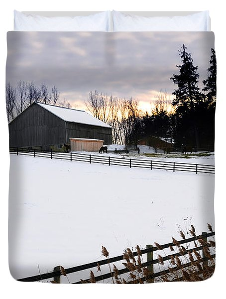 Rural Winter Landscape Duvet Cover by Elena Elisseeva