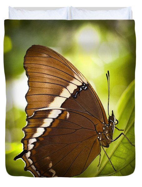 Rusty Tip Butterfly Duvet Cover by Bradley R Youngberg