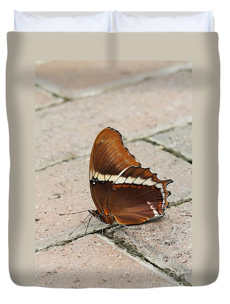 Rusty Tipped Page Butterfly Duvet Cover by Judy Whitton