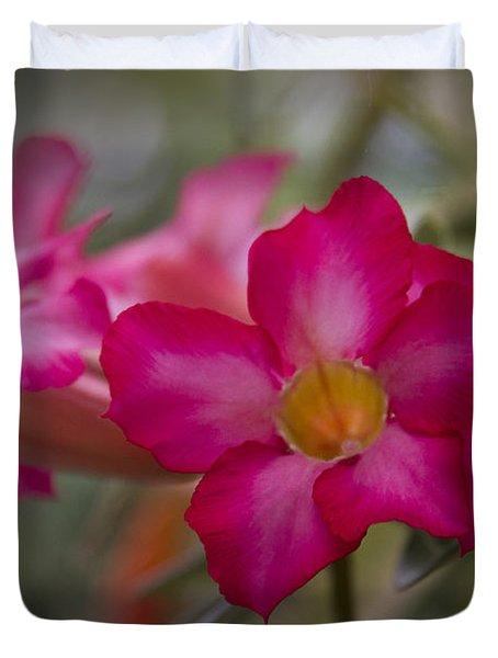 Sabi Star - Desert Rose Garden Of Dreams Hawaii Duvet Cover by Sharon Mau