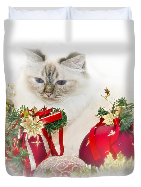 Sacred Cat Of Burma Christmas Time II Duvet Cover by Melanie Viola