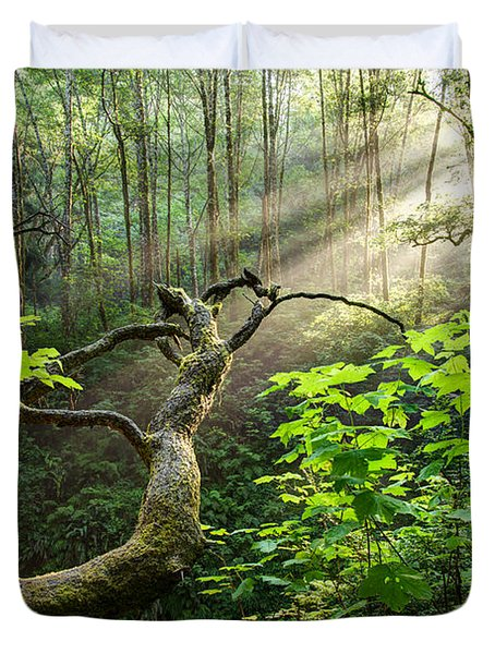 Duvet Cover featuring the photograph Sacred Grove by Dustin  LeFevre