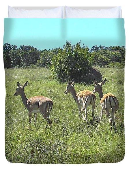 Safari Wildlife 1 Duvet Cover