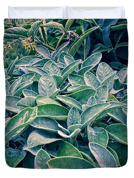Sage In The Garden Duvet Cover