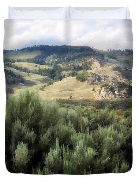 Sagebrush Duvet Cover by Marty Koch