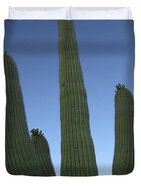 Duvet Cover featuring the photograph Saguaro Cactus At Sunset by Alan Vance Ley