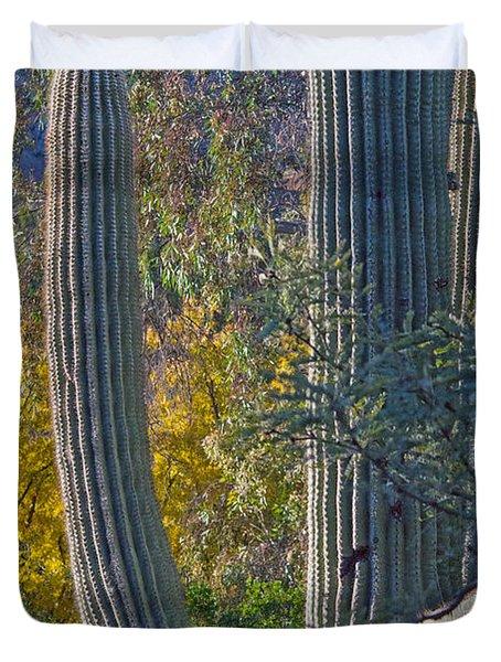 Saguaro Fall Color Duvet Cover