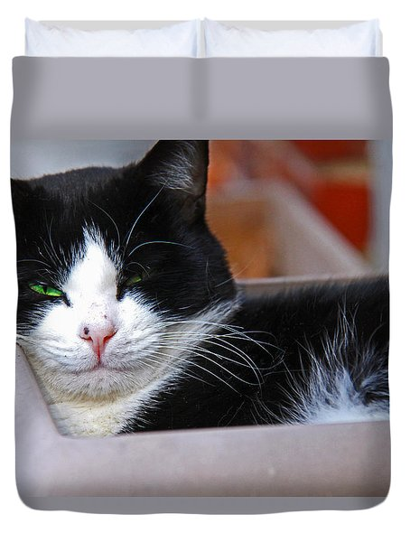 Salem Resting Duvet Cover by Andy Lawless