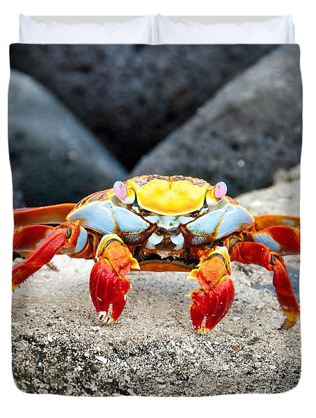 Sally Lightfoot Crab Duvet Cover