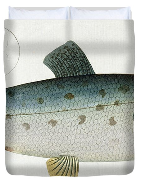 Salmon Duvet Cover by Andreas Ludwig Kruger
