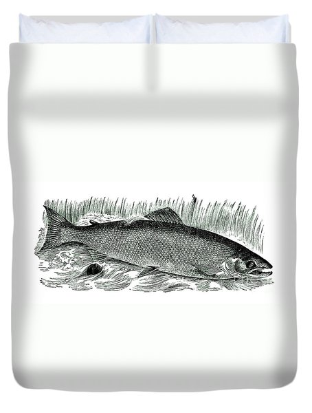 Salmon Drawing 1885 Duvet Cover