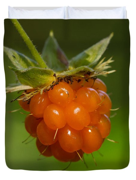 Salmonberry Duvet Cover