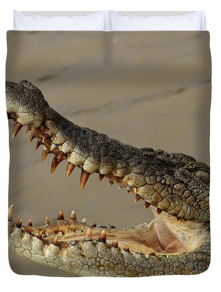 Salt Water Crocodile 1 Duvet Cover by Bob Christopher