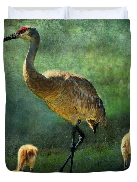 Sandhill And Chicks Duvet Cover by Barbara Chichester