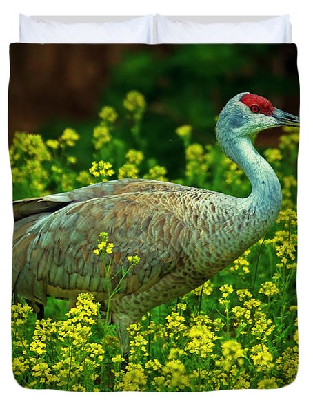 Sandhill Crane Duvet Cover by Elizabeth Winter
