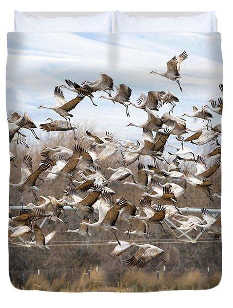 Sandhill Crane Explosion Duvet Cover