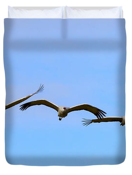 Sandhill Crane Flight Pattern Duvet Cover by Mike Dawson