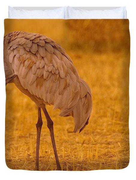 Sandhill Crane Preening Itself Duvet Cover by Jeff Swan