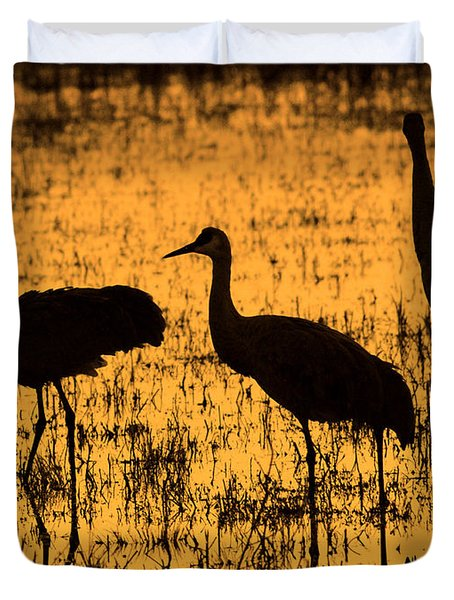 Sandhill Crane Silhouette Duvet Cover
