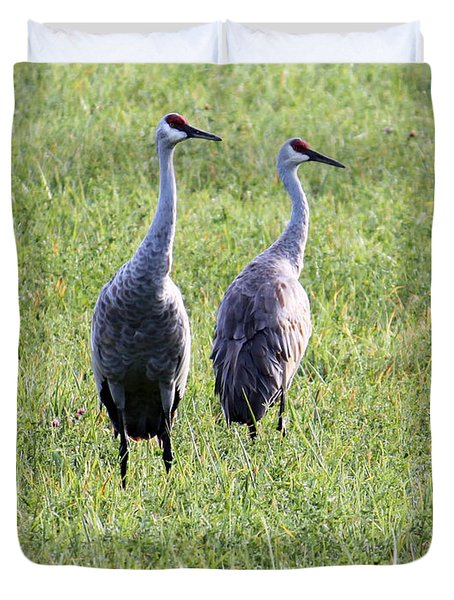 Duvet Cover featuring the photograph Sandhill Cranes In Wisconsin by Debbie Hart