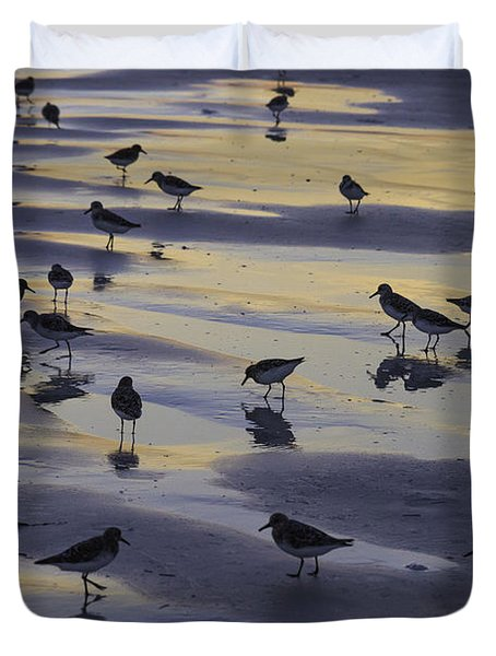 Sandpiper Sunset Convention Duvet Cover