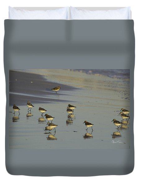 Sandpiper Sunset Reflection Duvet Cover