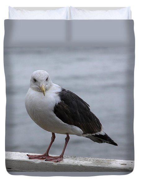 Santa Cruz Gull Duvet Cover by Chris Thomas