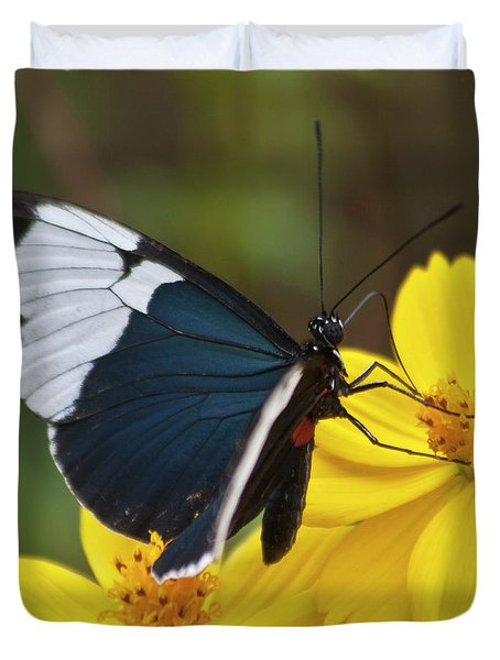 Sapho Longwing Yellow Oriented Duvet Cover by Heiko Koehrer-Wagner