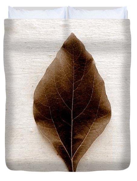 Sassafras Leaves In Sepia Duvet Cover by Michelle Calkins