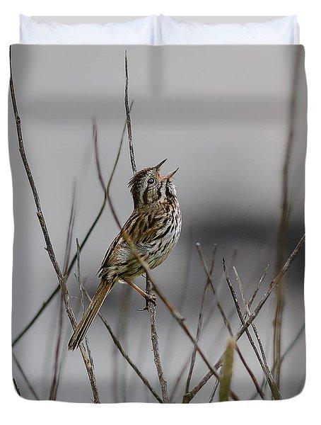 Savannah Sparrow Duvet Cover by Marty Saccone