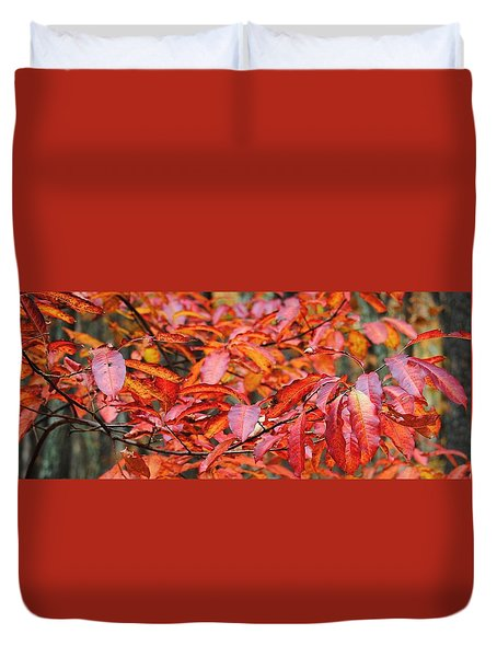 Sawnee Autumn Duvet Cover