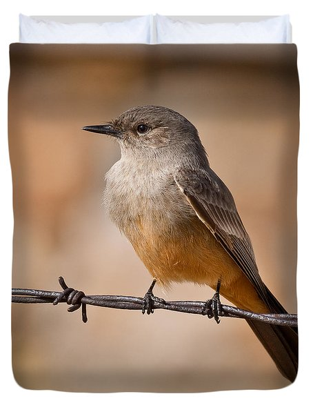 Say's Phoebe On A Barbed Wire Duvet Cover