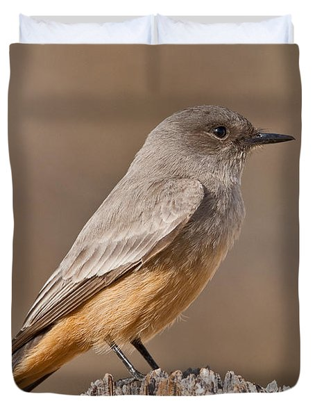 Say's Phoebe On A Fence Post Duvet Cover