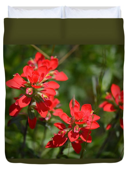 Scarlet Paintbrush. Texas Wildflowers. Castilleja_indivisa Duvet Cover