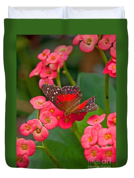Scarlet Swallowtail Butterfly On Crown Of Thorns Flowers Duvet Cover