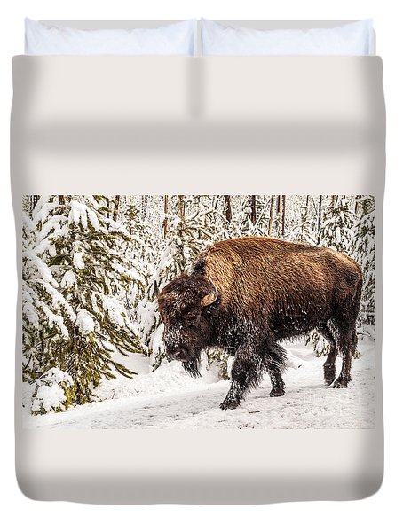 Scary Bison Duvet Cover